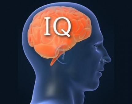 Как повысить свой уровень IQ
