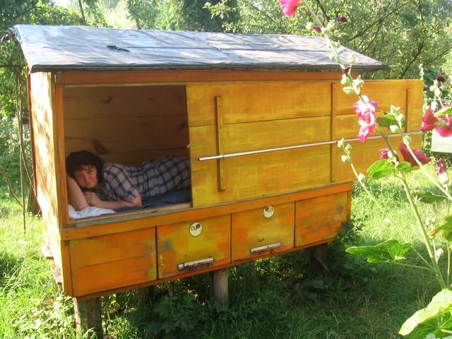 Сон на ульях с пчелами