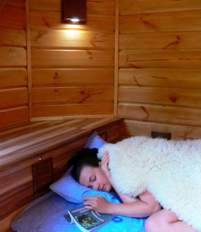 Сон в апидомике